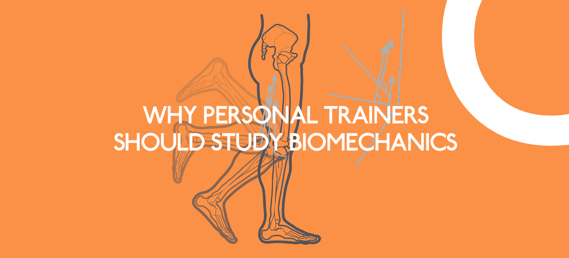 WHY-PERSONAL-TRAINERS-SHOULD-STUDY-BIOMECHANICS-_Web-x2-Lo-Res_5