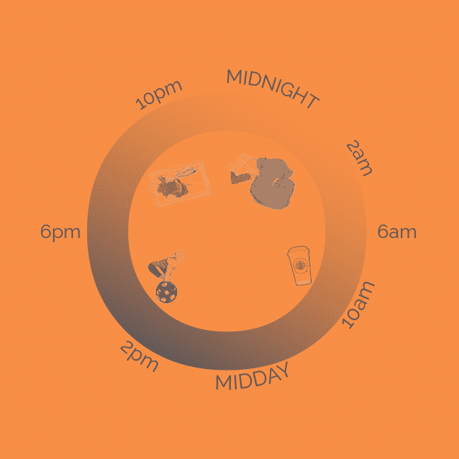 The Circadian Rhythm And Your Health